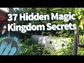 37 Hidden Secrets in Disney World's Magic Kingdom!