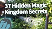 37 Hidden Secrets in Disney World's Magic Kingdom!