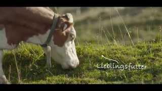 Salzburg Milch Spot, 3min