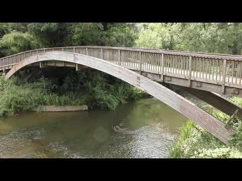 River Mole, Surrey 4K