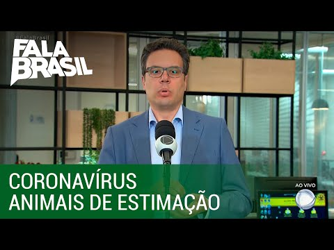 Veterinário Desmistifica Vacina Contra Coronavírus Para Animais
