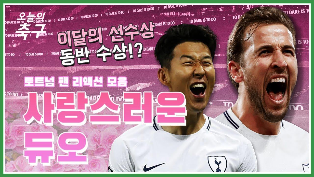 손흥민 & 케인 케미에 행복해하는 토트넘 팬 반응, '이달의 선수상' 동반 수상도!?ㅣSon Heung-Min #오늘의리액션