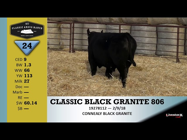 Classic Angus Ranch Lot 24