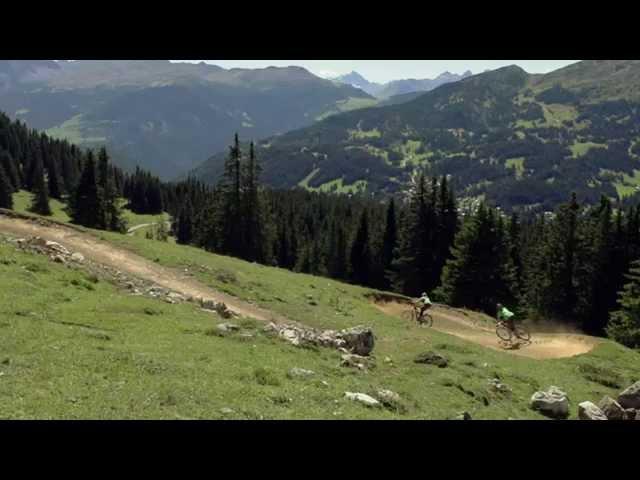 GORILLA Bike - Level 2: Linienwahl (9/22) D