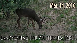 Midwest Whitetail | Planting Apple Trees for Deer Hunting