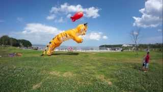 Скачать Тигр Воздушный змей 2