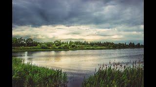 Путешествия по лесным дорогам Смоленска. Природа. Озеро.