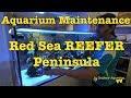 Aquarium Maintenance: Red Sea REEFER Peninsula --- Gallery Aquatica TV