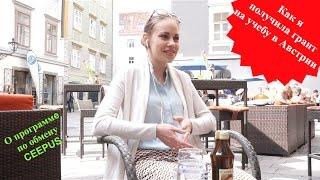 🇦🇹 О программе студенческого обмена CEEPUS. Учеба в Австрии