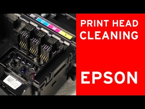 Epson Print Head Cleaner Nozzle Cleaning Flushing