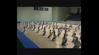 Summer camp Primorsko 2008, Bulgaria. Black belts practice whit San...