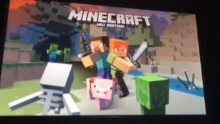 Two player for Minecraft WII U edition
