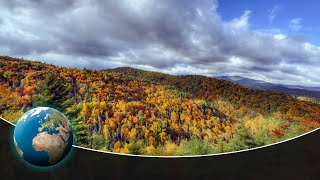 Great Smoky Mountains  Staggering Biodiversity in America's most visited National Park