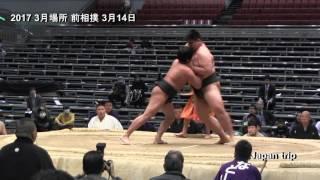 平成29年(2017)大阪での3月場所での前相撲2日目の様子。