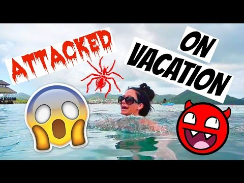 I WAS ATTACKED ON VACATION!!!