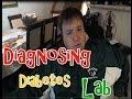 Diagnosing Diabetes - Video Lab Series