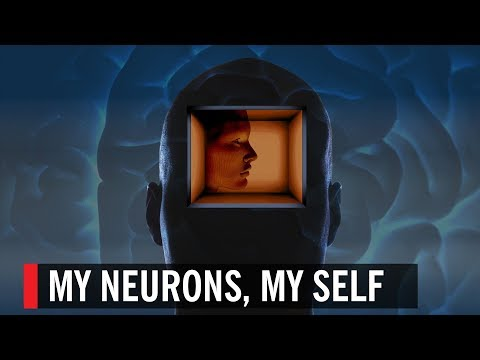 My Neurons, My Self