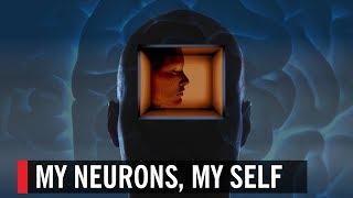 My Neurons, My Self