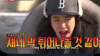 Song Jihyo protected by Running Man Oppas from scary Insects Ep. 337