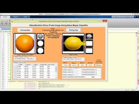 Classification Citrus Fruits Image Using Naive Bayes Classifier Matlab Project with Source Code