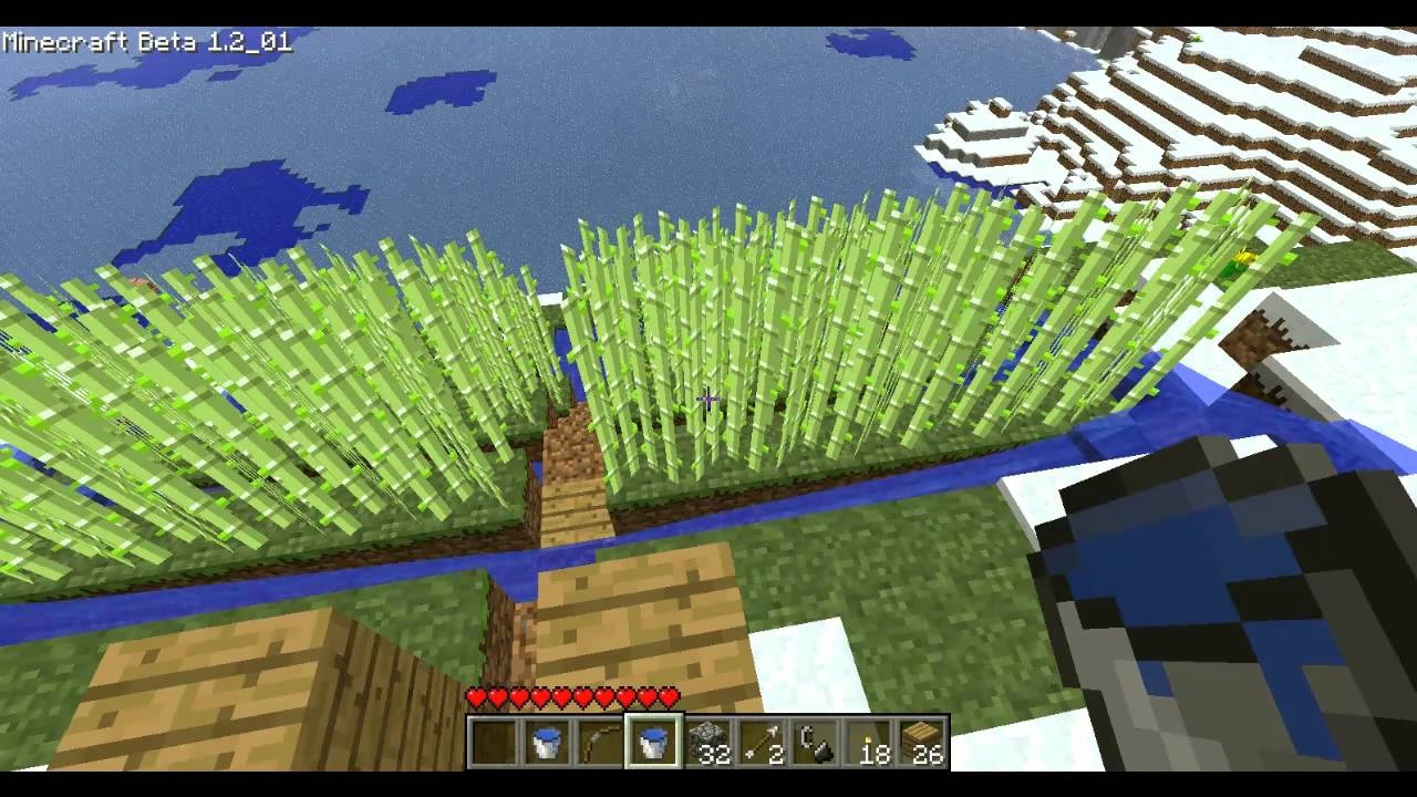Place Bamboo, Support WWF! | Minecraft