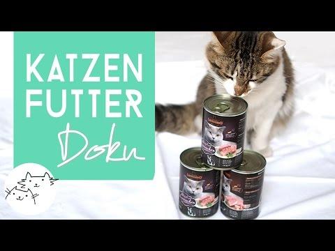 Schmeckt's? Katzenfutter Entwicklung bei LEONARDO   Doku