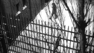 Birdman Of Alcatraz - Trailer