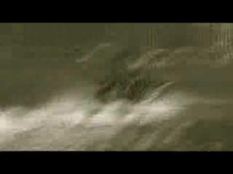 Ettiene Celliers-Babe Jy Maak My Mal (musiek video)
