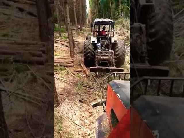 Melhor trator para Guincho o florestal Valtra 1780 ano 2004 não tem para louco