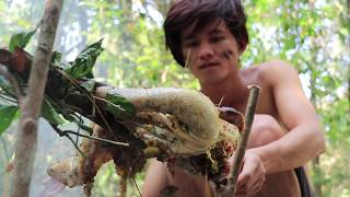 Download Video Hunting Duck Using Primitive Spear and then Roasted Duck For Dinner MP3 3GP MP4
