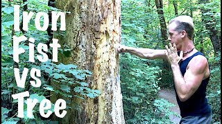 Iron Fist Kung Fu vs Tree