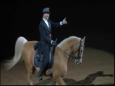 "hira rashmin horses of the night Npo honzo haven presents ""hands on live keiichi hiramoto ( patti smith - land (horses."