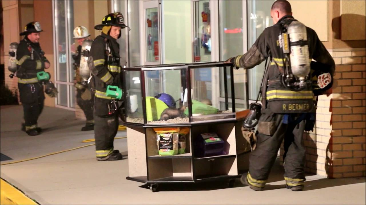 Carbon Monoxide Emergency @ Rocky Point PETCO / October 2016