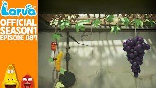 official grape- larva season 1 episode 87