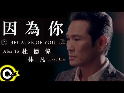 杜德偉 林凡-因為你(三立都會台「就是要你愛上我」插曲) (官方完整版MV)(HD)