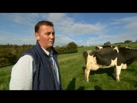 "Morrisons ""Milk for Farmers"" and life on a Tesco dairy contract."