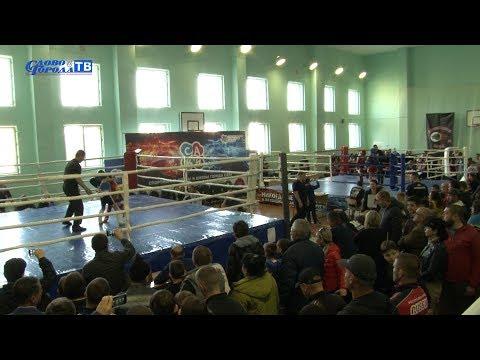 В Саках прошёл чемпионат Крыма по тайскому боксу - привью к видео W5sur9G5i5w