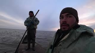 Ловля сетями Рыбалка в Астрахани Большой улов