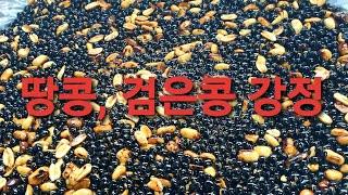 땅콩#검정콩#강정만들기&영양많은 간식&바…