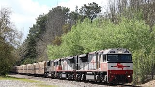 Adelaide Hills Rail Action - 22nd October 2016