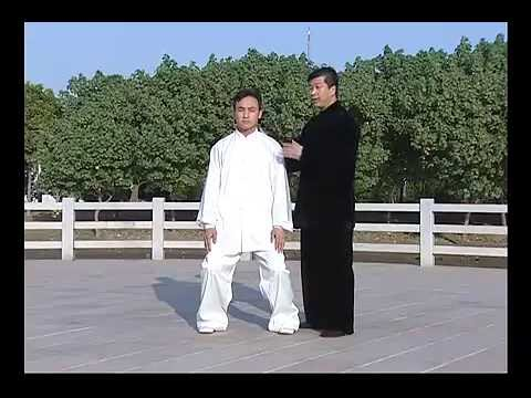 Beijing Chen style Tai Chi 13 form application