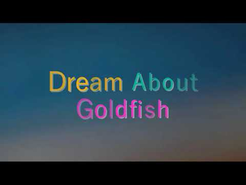 What Does It Mean When You Dream About  Goldfish