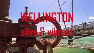 Wellington - alive and vibrant