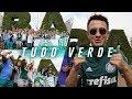 Festa da torcida do Palmeiras em Buenos Aires