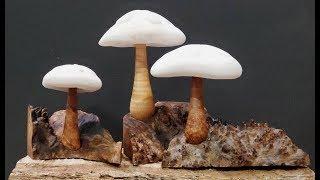 Woodturning | Mushroom