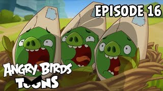 Baixar Angry Birds Toons | Double Take - S1 Ep16