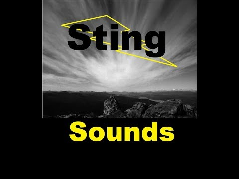 Dramatic Sting Sound Effects All Sounds