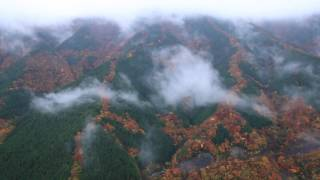 奈良県上北山村.