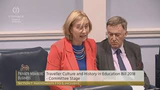 Traveller Culture and History in Education Bill   Committee Stage