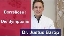 Borreliose: Symptome und Behandlung